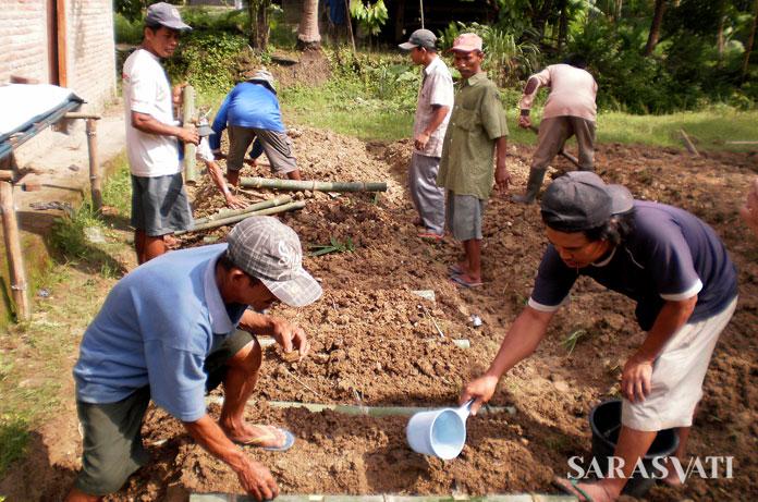Yogyakarta, 2012. Proses pembibitan sangat penting untuk menjamin ketersediaan pasokan bambu